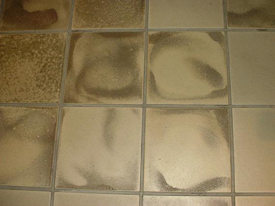 炻器質施釉床